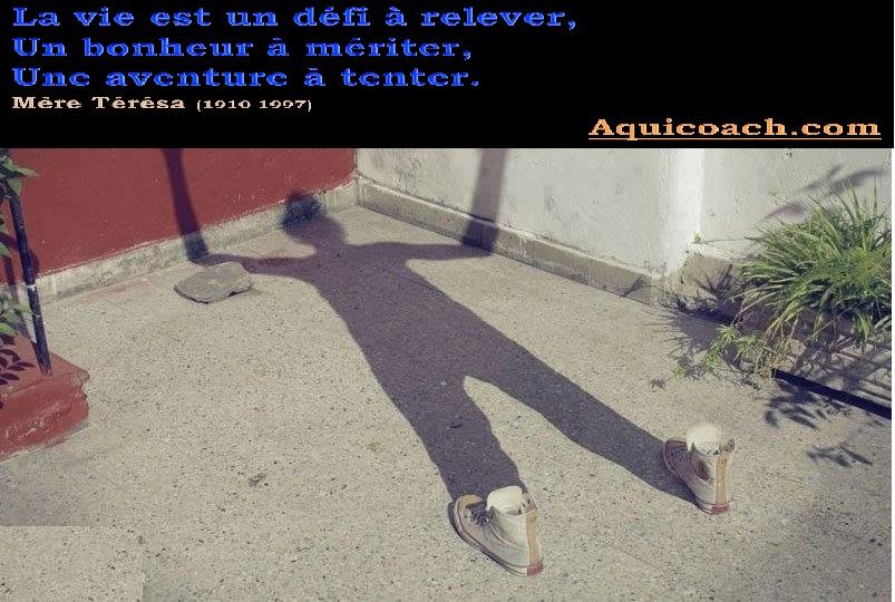 l'ombre de vous même  22122015
